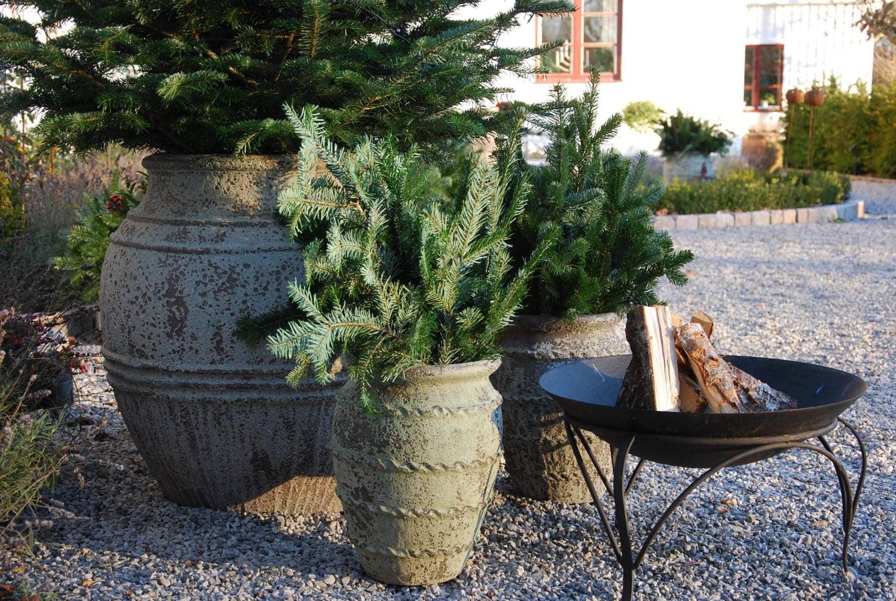 Vaso Knossos stort planteringskärl med julgran utekrukor stora krukor