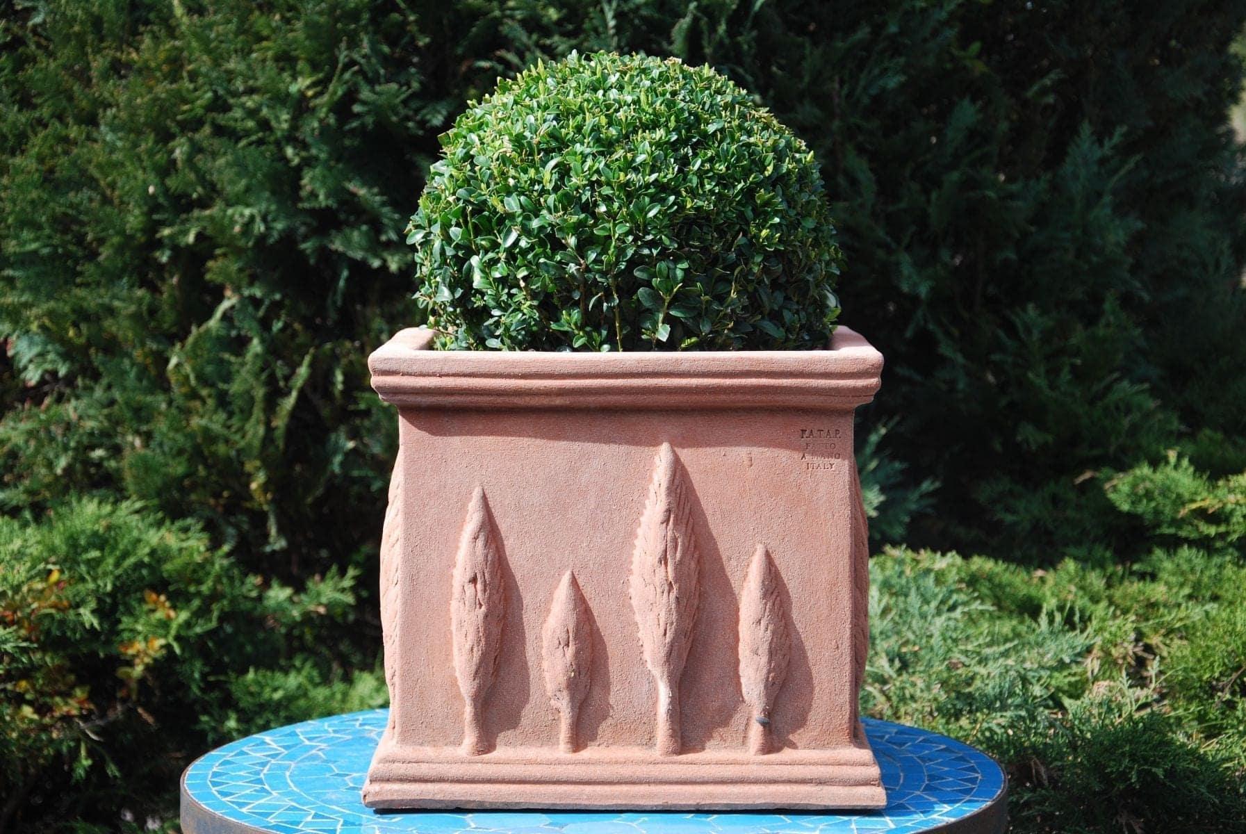 Cubo Cipressi Italiensk fyrkantig dekorerad terrakottakruka från Cadabra