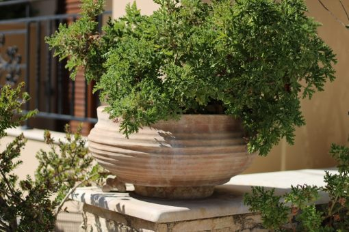 skål terracotta sfera rigata frosttålig terrakotta