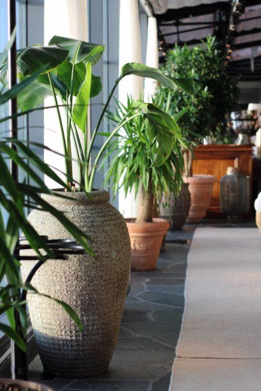 Interior design krukor vaser olivo stengods the steam hotel pool