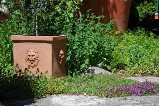 Kruka med lejon Quadrato teste leone rektangulär Italiensk terracottakruka