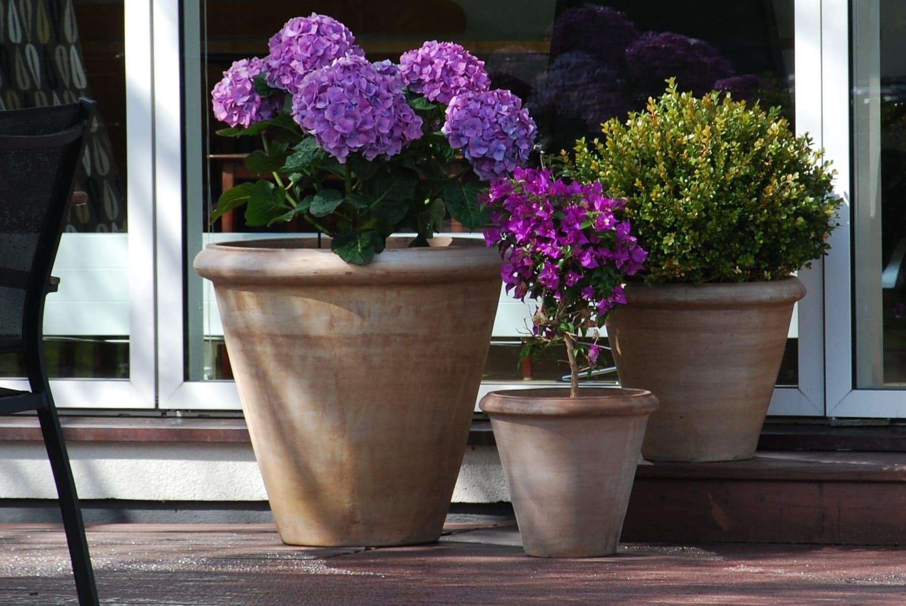 Cadabra Classico Chocolate handgjorda terracottakrukor för medelhavsträdgården