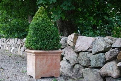 Fyrkantigt planteringskärl och Italiensk terrakottakruka pilone liscio