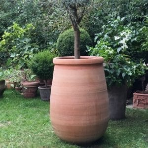 Tsaros stora frosttåliga terrakottakrukor och urnor utekrukor planteringskärl