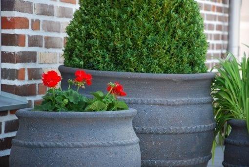 Vaso Colosseo stora planteringskärl och krukor ute i trädgården
