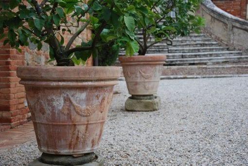 Terrakottakrukor Vaso Festonato frosttåliga Italienska utekrukor