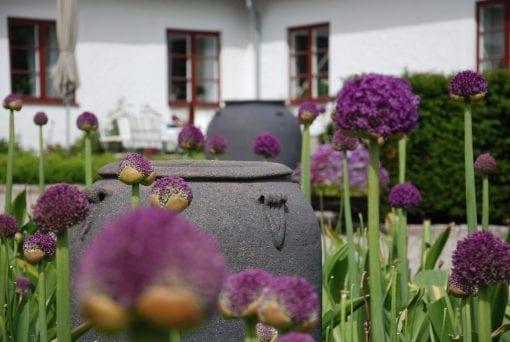 Vaso Stretto och Emporia frosttåliga stora urnor, kärl och krukor, utekrukor och trädgård