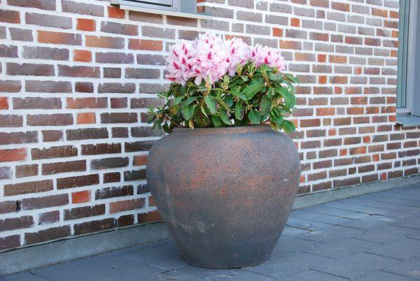Vaso Vecchio stora låga krukro och urnor gardendesign interiordesign