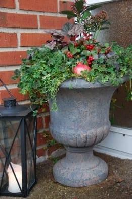 vaso coppa urna på fot och stora frosttåliga krukor