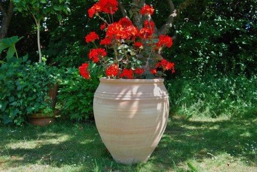 Taras stora urnor och krukor i terrakotta från Kreta