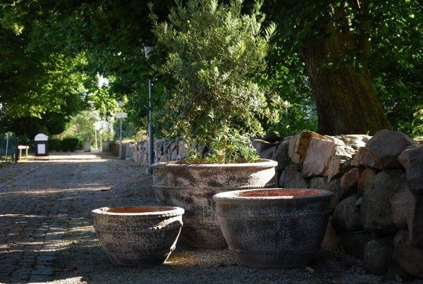 Colosseo wide Dolomite stora krukor utekrukor planteringskärl