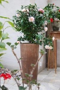 höga terrakottakrukor cono lungo plain utekrukor interior design trädgården