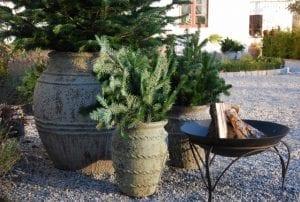 Vaso Knossos stort plnateringskärl med julgran utekrukor stora krukor